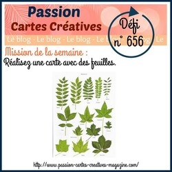 Passion Cartes Créatives#656 !