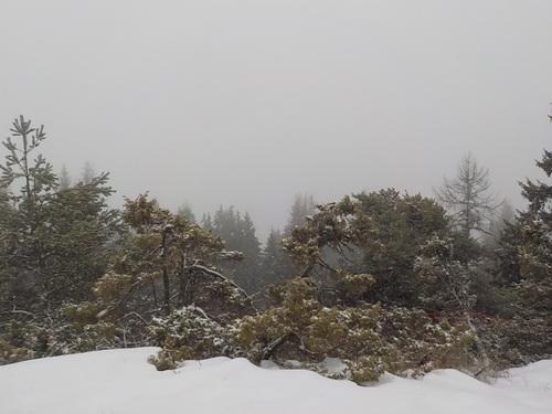 DOMANDALAS  photo rando neige 1 2 18