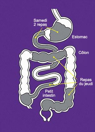colon9