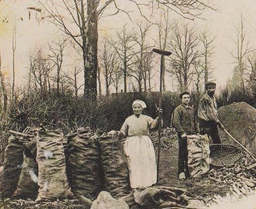 Famille Clouzeau, Mézilles, Fontaines, Saint-Fargeau (89)