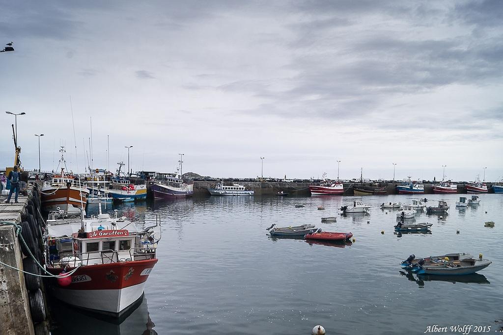 Roscoff - Le  port  un matin  (1)
