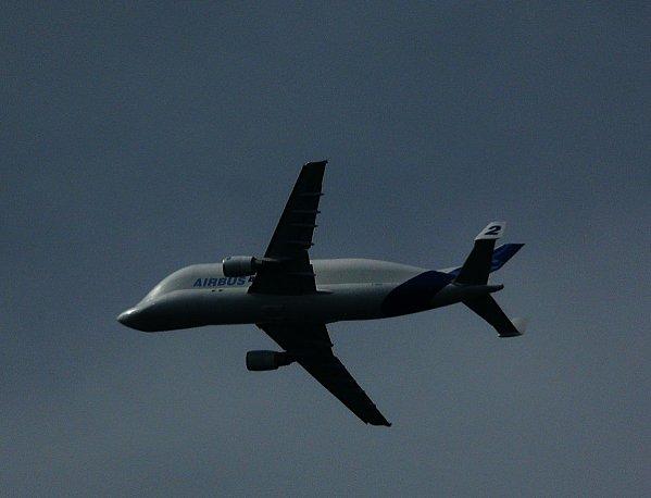 Beluga-Airbus.JPG