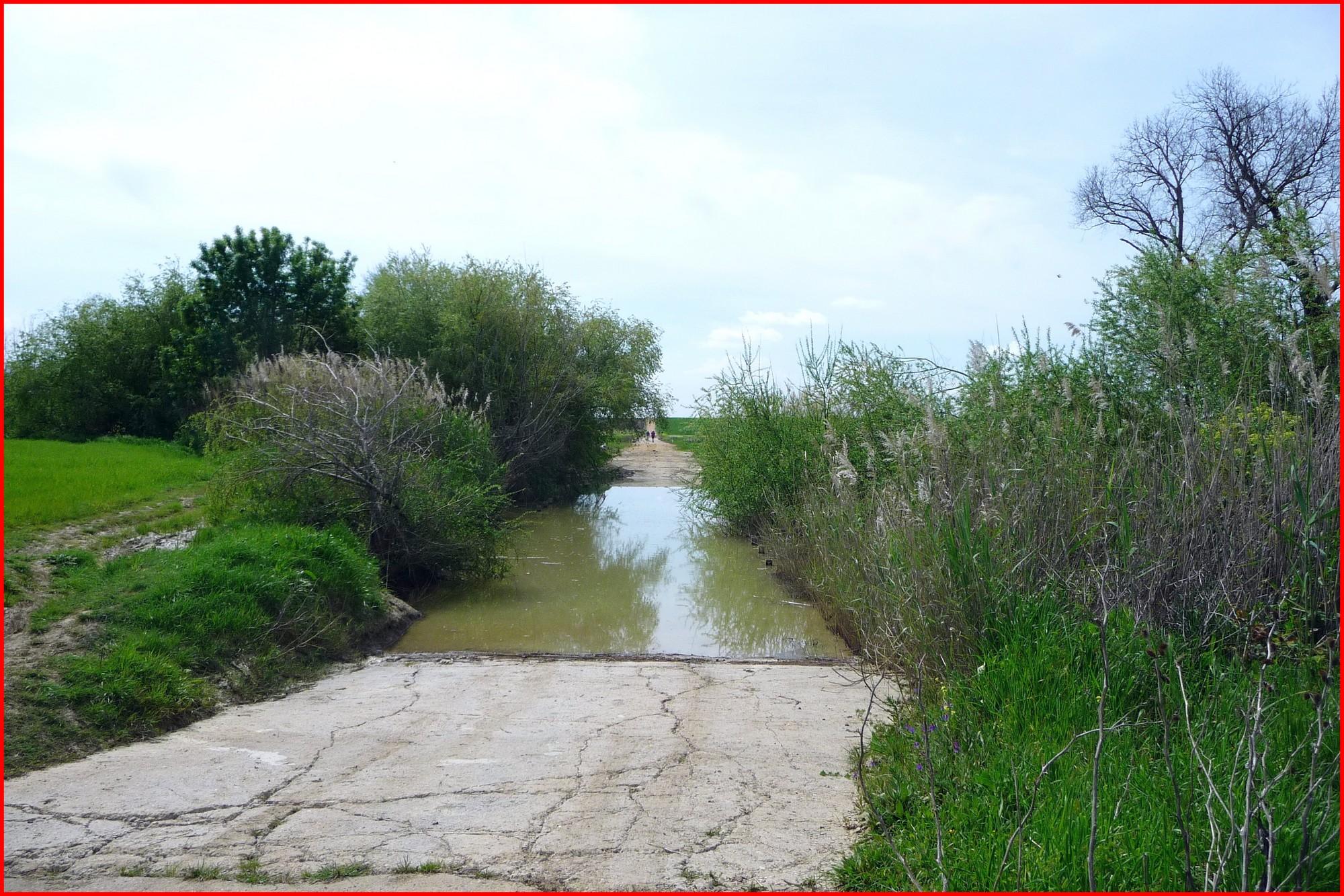 L'arroyo scabreux entre Séville et Guillena (en 2011 !)