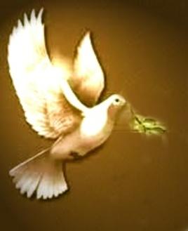 En Toi, Jésus, la rencontre de l'Amour....