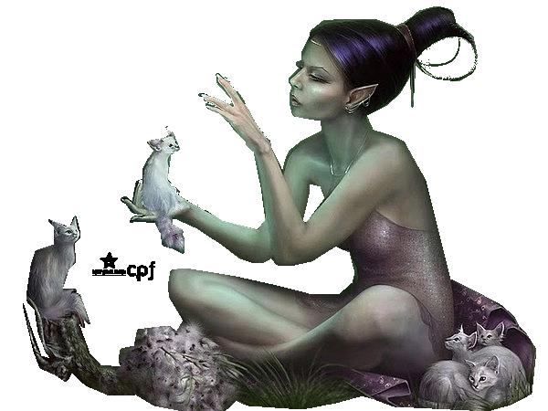 Tubes elfe et chats