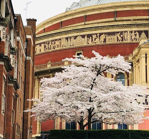 Magnifique concert au Royal Albert Hall