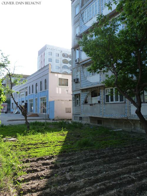 Agriculture et biodiversité urbaine