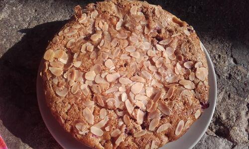 Gâteau Multifruits et Amande {Vegan}