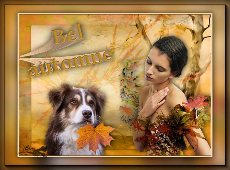 31 Bel automne