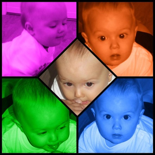 Montage Andy Warold