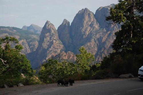 Ces belles montagnes nous accompagnent