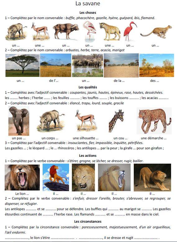 Gut gemocht Vocabulaire de la savane - Rédaction au primaire GR36