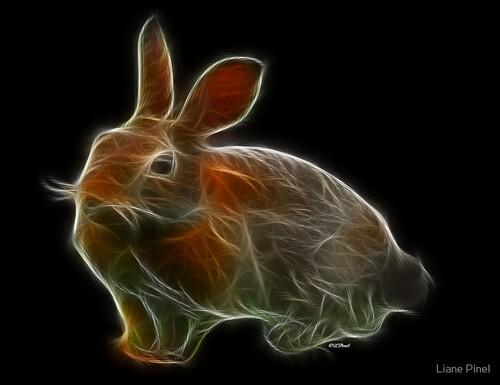 02 - Des histoires de lapins en peinture, suite