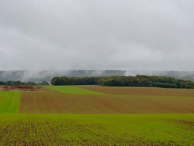 Moselle en automne 24 Marc de Metz 16 10 2012