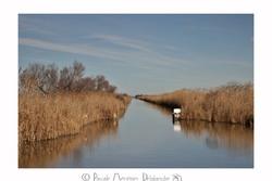 Canal de Gallician - Gard