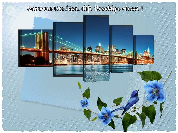 Défi n° 57  : Le Pont de Brooklyn