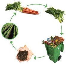 Cycle du compost