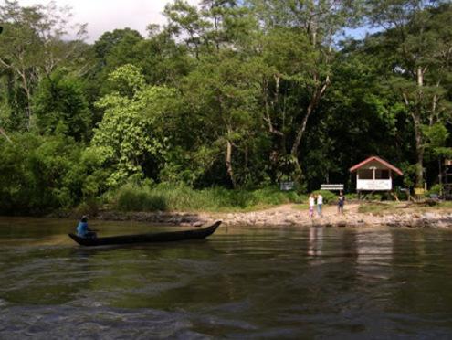 Parc National de Gunung Leuser à Sumatra