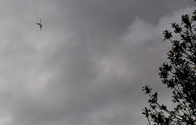 Achats jardiniers et avions de chasse