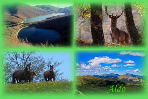 PPS Parco Appennino