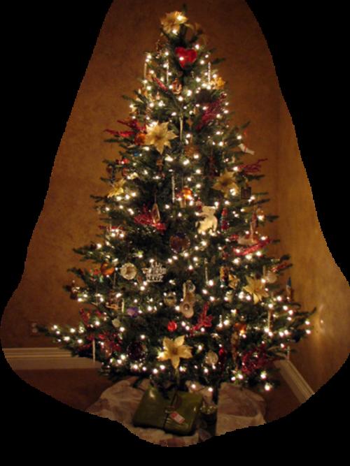 Sapins de Noël / 2