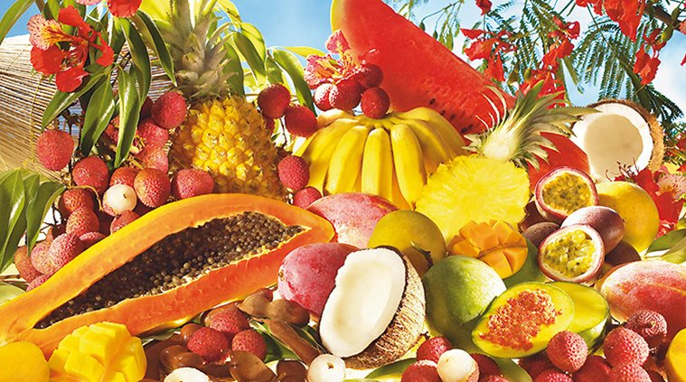 - Fruits exotiques - Recette : Panna Cotta exotique