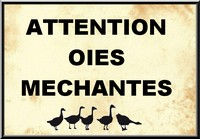 oies mechantes