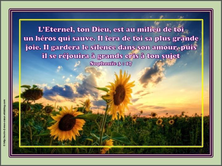 L'Eternel, ton Dieu, est au milieu de toi - Sophonie 3 : 17