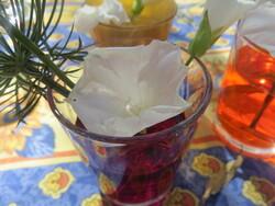 Les fleurs boivent