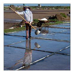 Nam Dinh 2- Reflets de salines