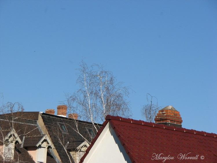 Ciel d'Alsace 402