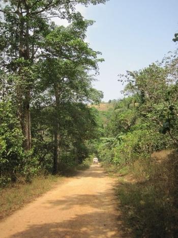 Togo Région des Plateaux Sur la piste