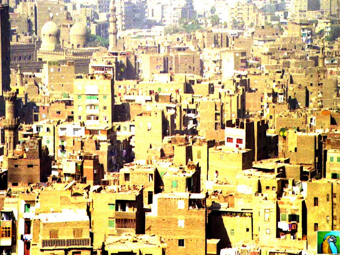 Egypte 2009 : balade au Caire