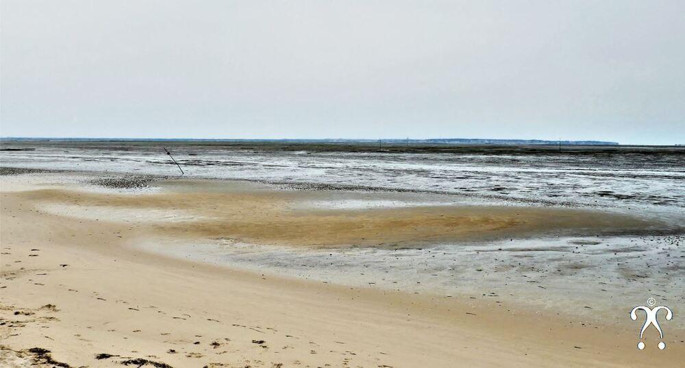 A marée basse
