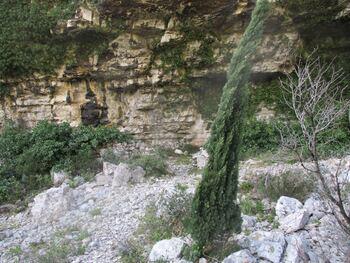 Un genre d'abri sous roche au fond apparent du vallon