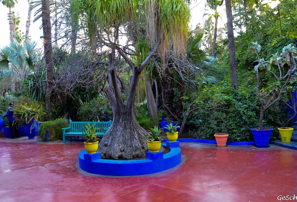 maroc jardin majorelle