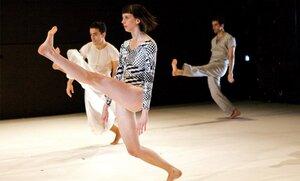 dance ballet theory dance maira kalman diana wortham