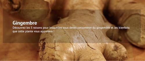 5 bonnes raisons de consommer du gingembre ...