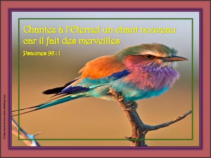 Chantez à l'Eternel un chant nouveau - Psaumes 98 : 1
