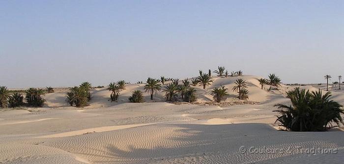 Autour de Douz, la porte du desert
