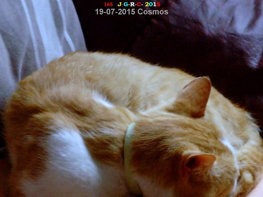NOS AMIS LES BETES    16/09/2015