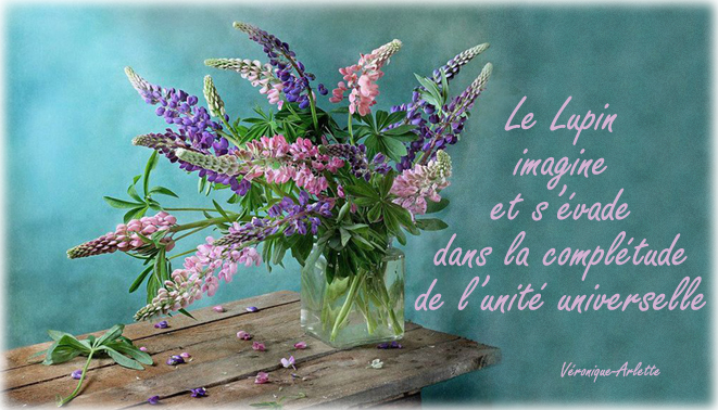Perle fleurie Lupin