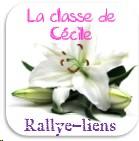 Logo rallye Liens