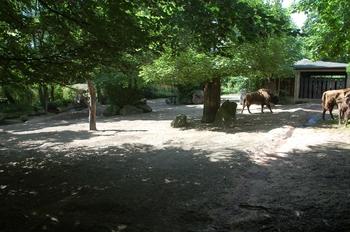 Zoo Duisburg 2012 723