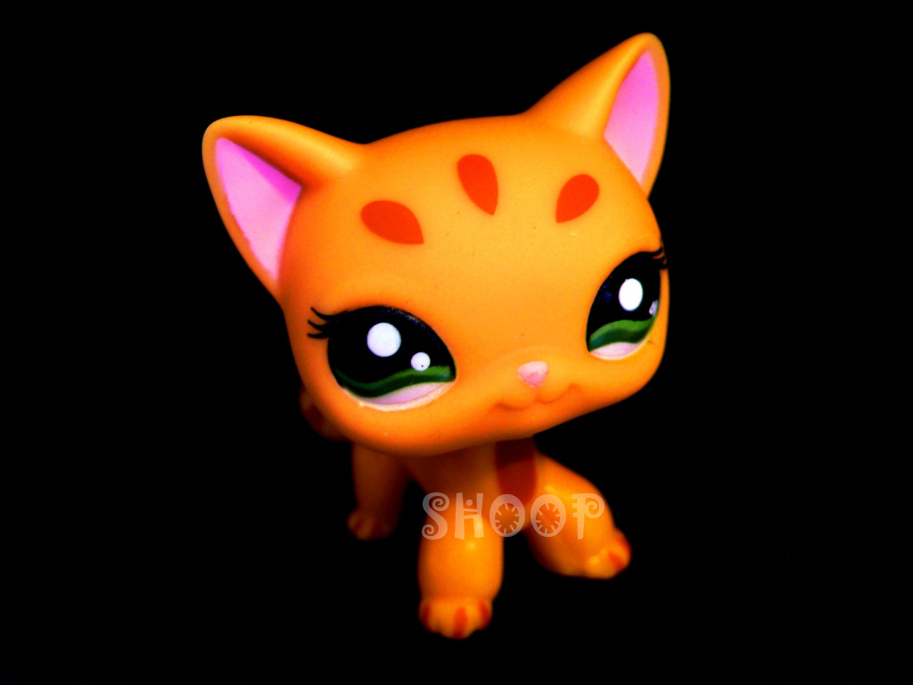 LPS 1377