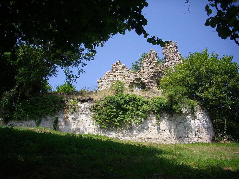 Beaulieu - château de Thynières (1).JPG