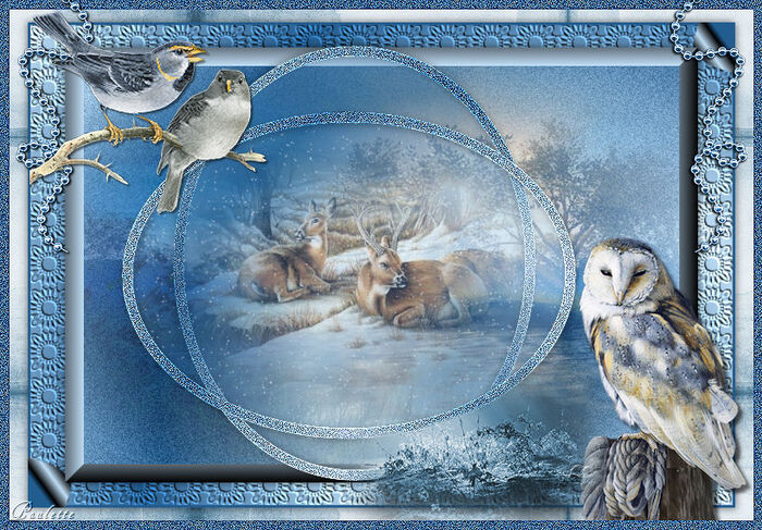 Vos versions - In the Woods