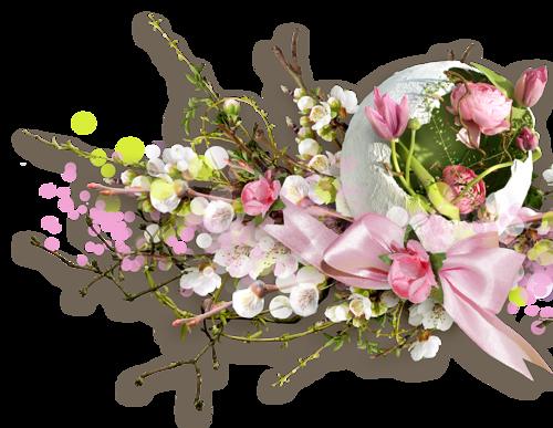 Résultat d'images pour belles images de printemps fleuris
