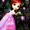 14 - princesa