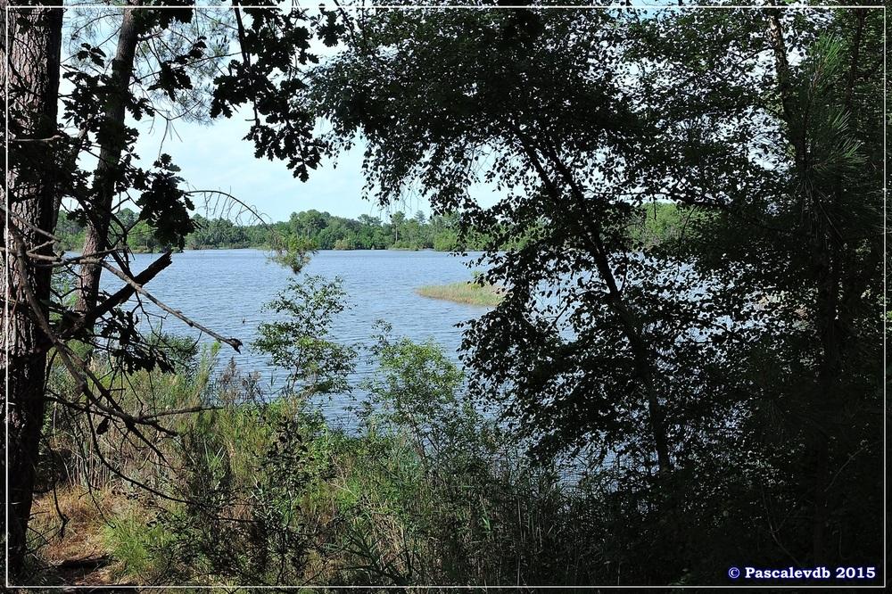 Nouvelle balade au lac du Bousquey - Juillet 2015 - 6/7